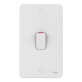 LWM 50A 2 gang DP plate switch with LED