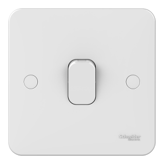 LWM 1 gang 2 way 10AX plate switch