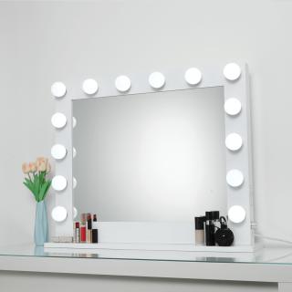 Professional Hollywood Mirror